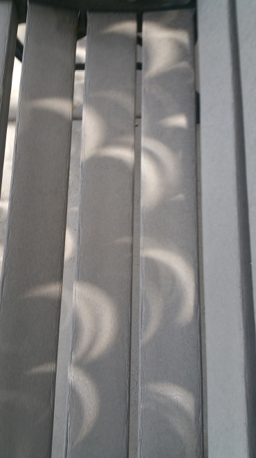 Crescent Suns on Bench